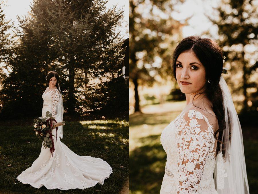 Pronovias long sleeve gown